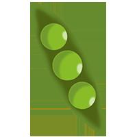 Pois pour le Logo du Petit Pois à Canohès pour le-petit-pois.fr